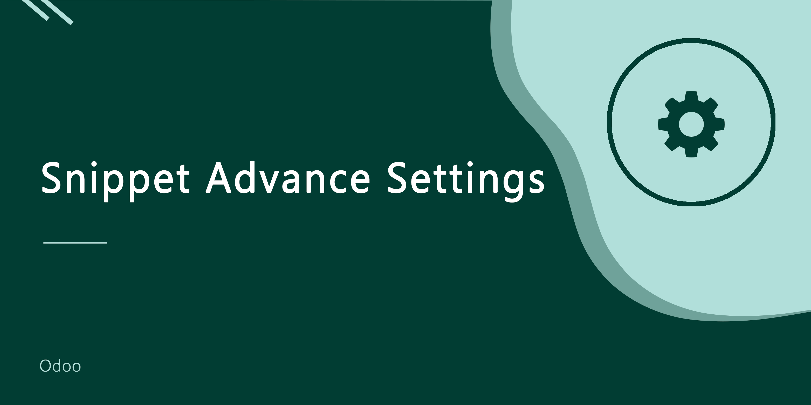 Snippet Advance Settings