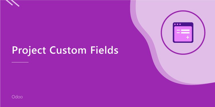 Project Custom Fields