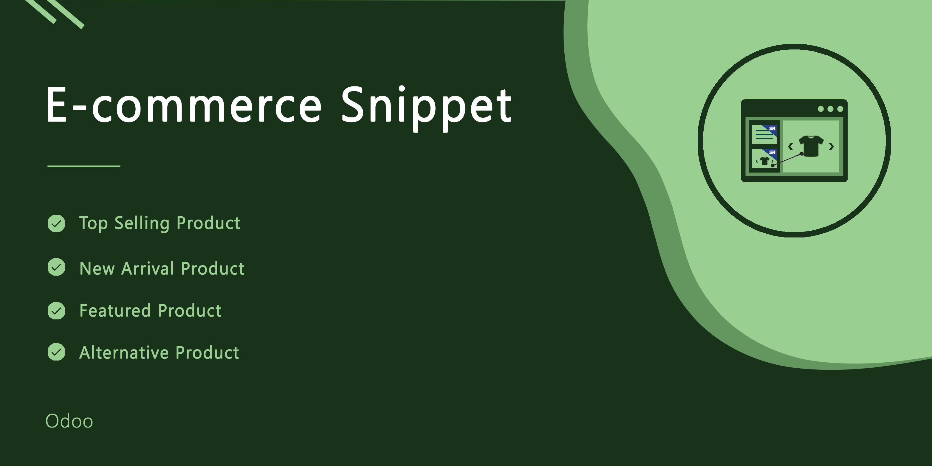 Ecommerce Snippet