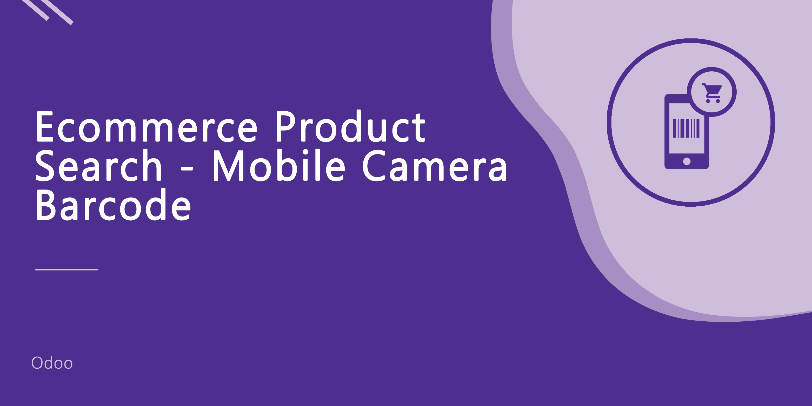 Ecommerce Product Search - Mobile Camera Barcode