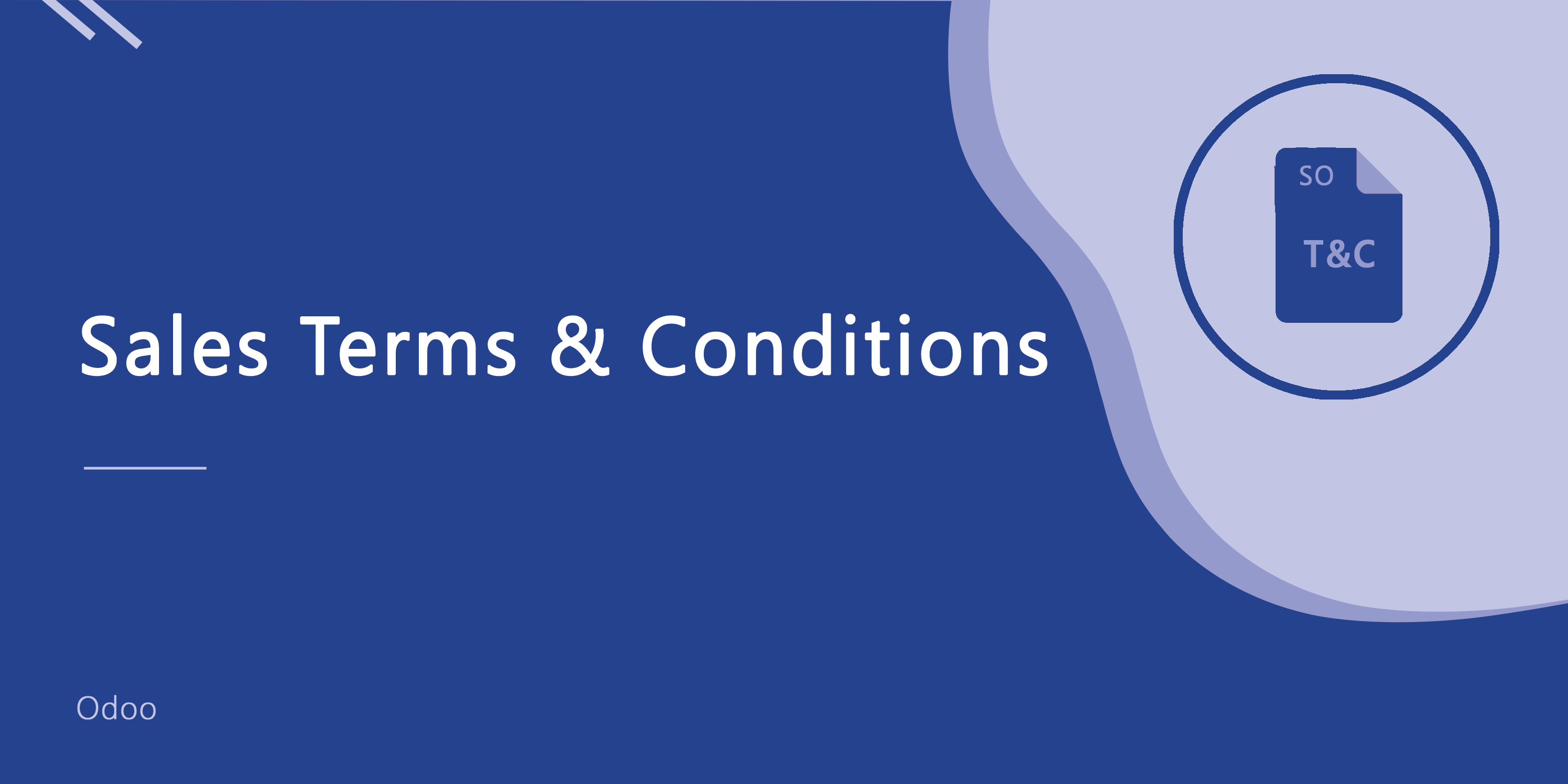 Sales Terms & Conditions