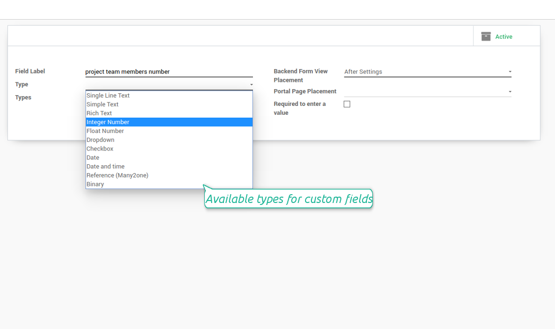 Custom field types for Odoo projects