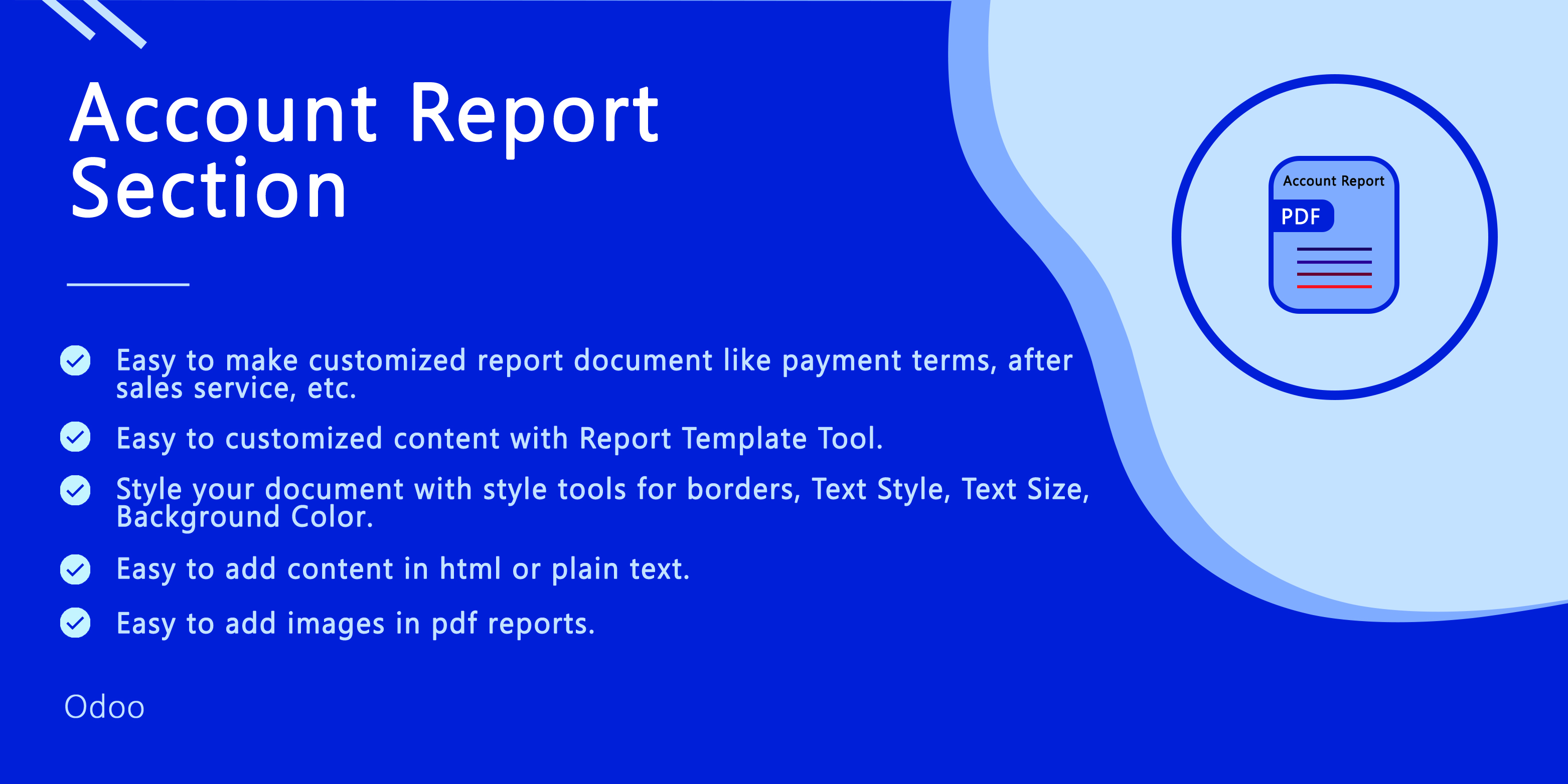 Account Report Section