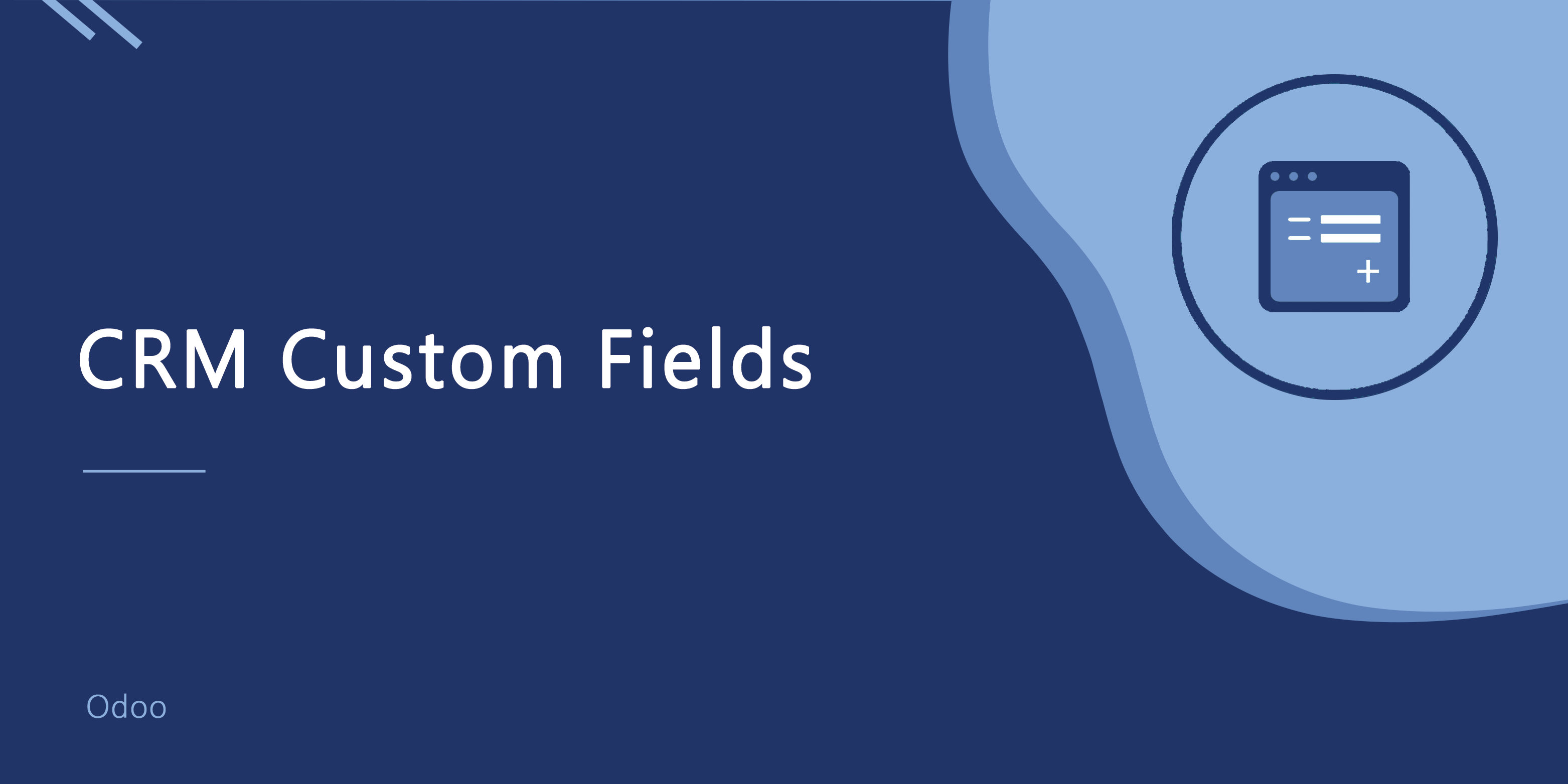 CRM Custom Fields